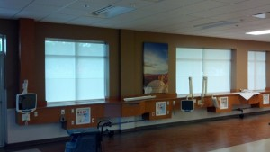 Roller Shades - Privacy and Light